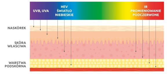Wpływ promieniowania nastryktury skóry